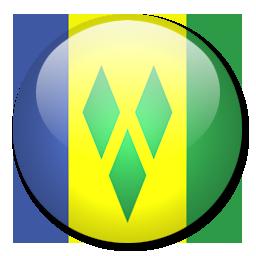 Escudo San Vicente y G